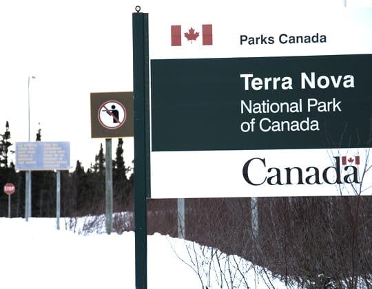 Terra Nova Park
