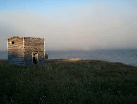 PHOTO: In Lower Island Cove