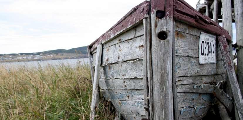 PHOTO: Grey boat in the Bonavista grass