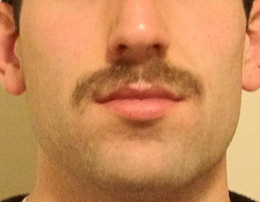 Movember Mupdate: Mov. 29