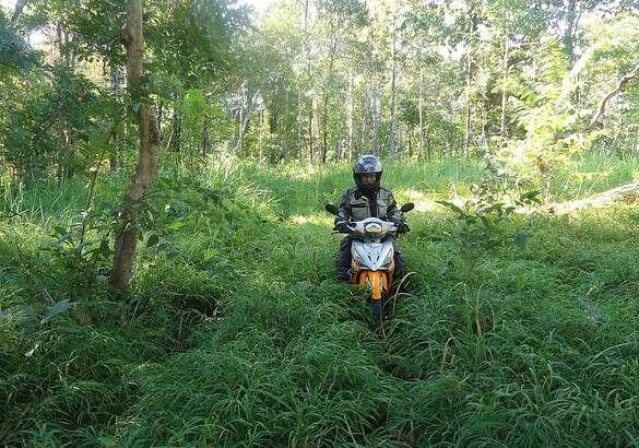 Mekong jungle adventure