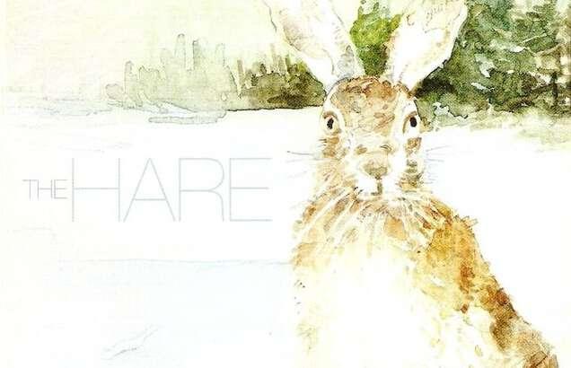 Heed the Hare