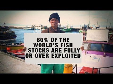 Revisionist Fishtory
