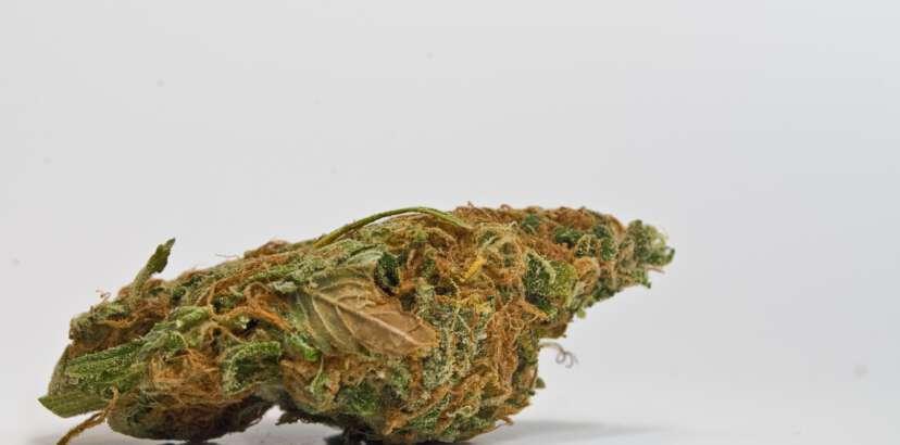 The inevitability of marijuana legalization
