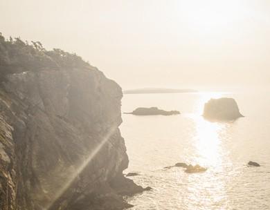 Seal Cove Dawn