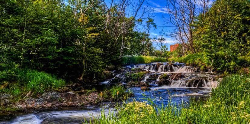 City of St. John's buries environment, again
