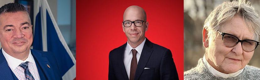 NL Election 2021 District Focus: Terra Nova